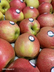 Appels Cripps Pink